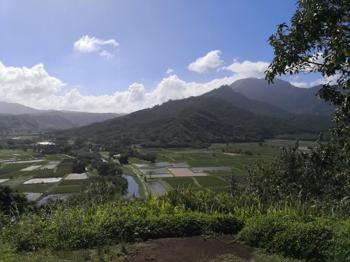 08 Kauai-18