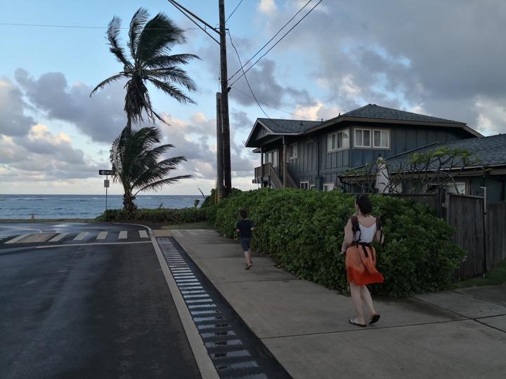 08 Kauai-20