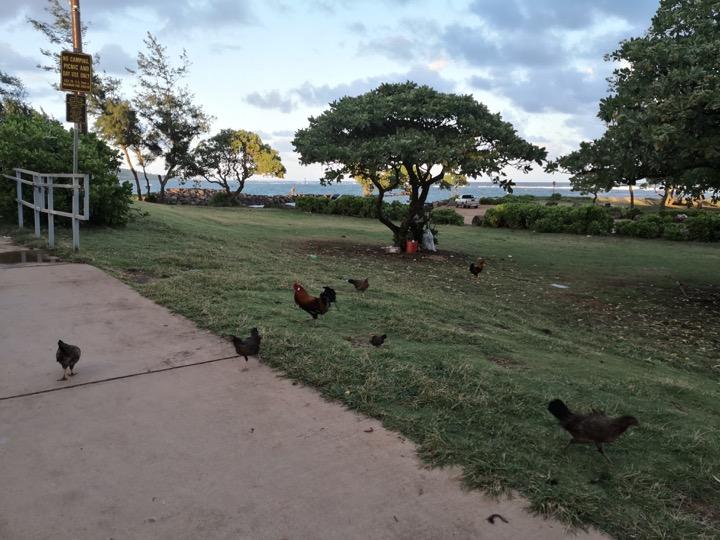 08 Kauai-21