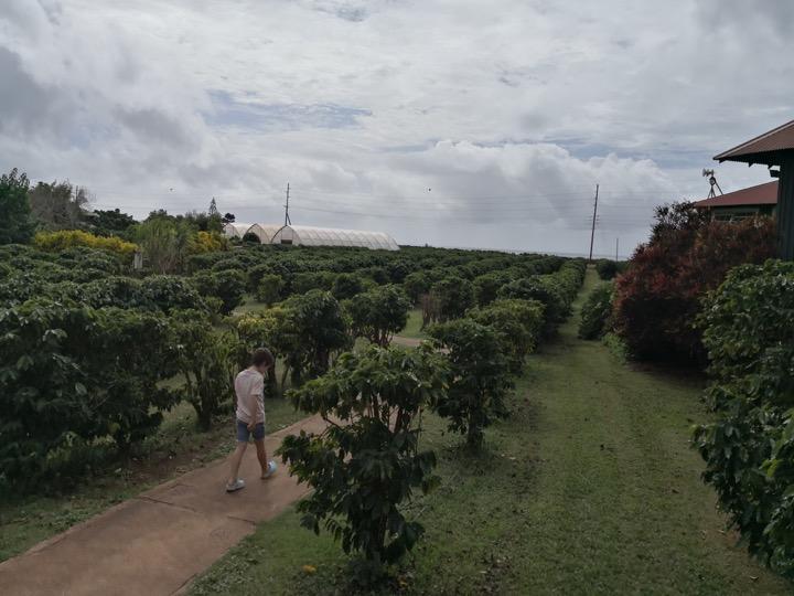 08 Kauai-39